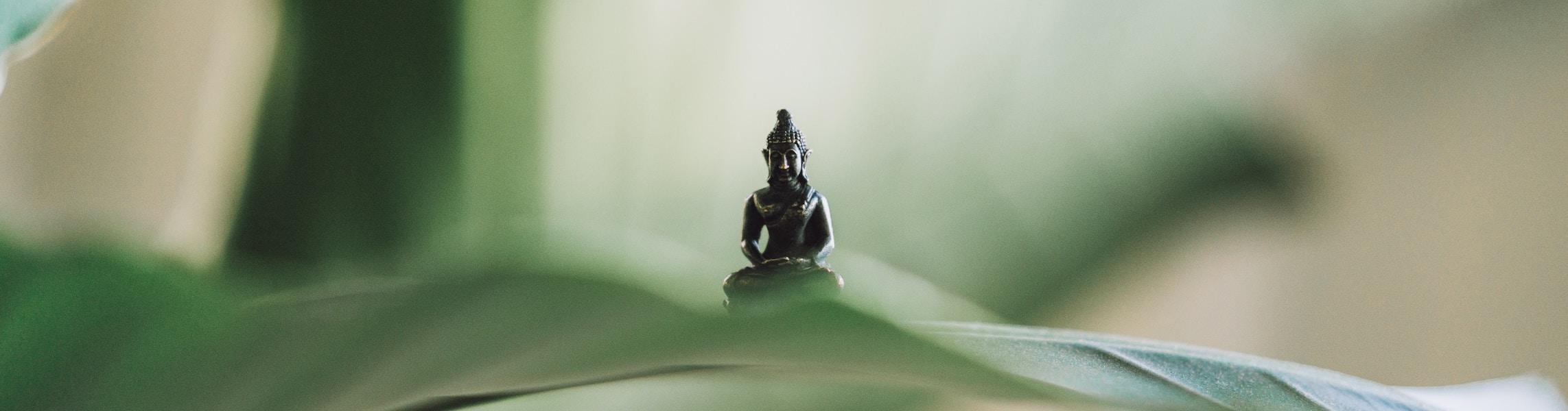 Zen meets Yoga |5-tägiges Zen-Yoga-Retreat